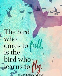 learn-to-fly-motivational-daily-quotes-sayings-pictures
